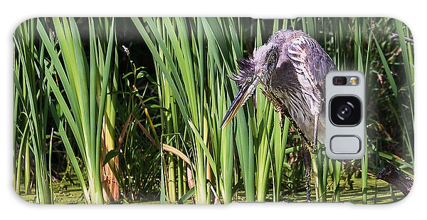 Great Blue Heron Itch Galaxy Case by Edward Peterson