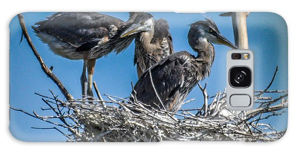 Great Blue Heron On Nest Galaxy Case