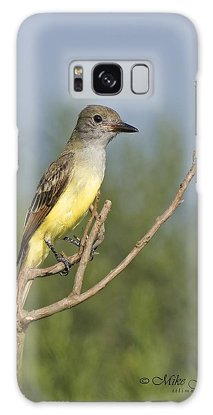 Great Crested Flycatcher Galaxy Case
