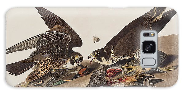 Carcass Galaxy Case - Great-footed Hawk by John James Audubon