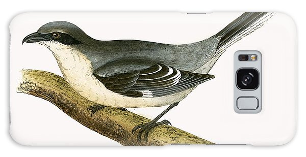 Song Bird Galaxy Case - Great Grey Shrike by English School