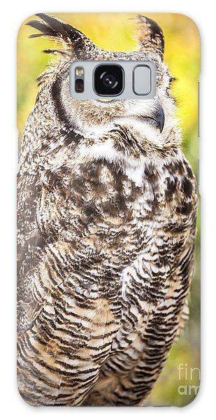 Great Horned Owl Large Canvas Art, Canvas Print, Large Art, Large Wall Decor, Home Decor, Photograph Galaxy Case