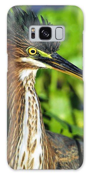 Green Heron  Galaxy Case