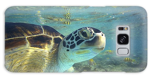 Galaxy Case featuring the photograph Green Sea Turtle Balicasag Island by Tim Fitzharris