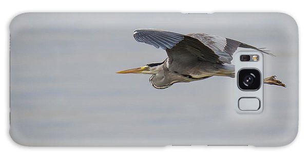 Grey Heron Galaxy Case