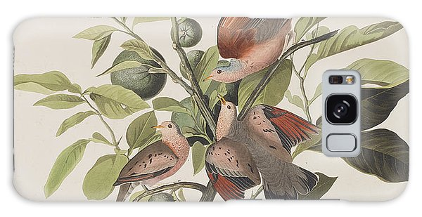 Ground Dove Galaxy Case