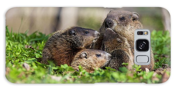 Groundhog Galaxy S8 Case - Happy Family by Mircea Costina Photography