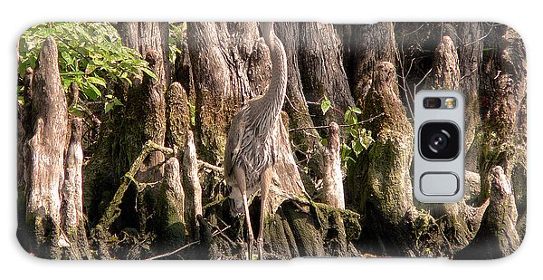 Heron And Cypress Knees Galaxy Case