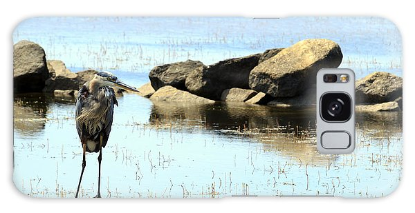 Heron On The Rocks Galaxy Case