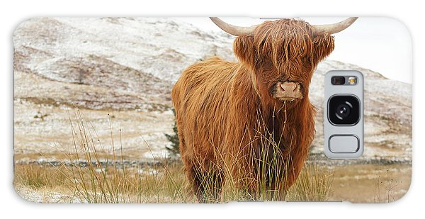 Highland Cow Galaxy Case