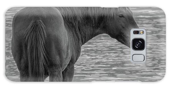 Horse 10 Galaxy Case
