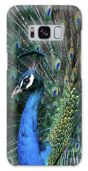Indian Peacock With Tail Feathers Up Galaxy Case