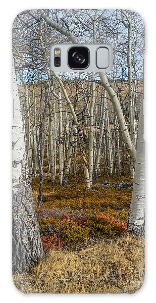 Into The Trees Galaxy Case