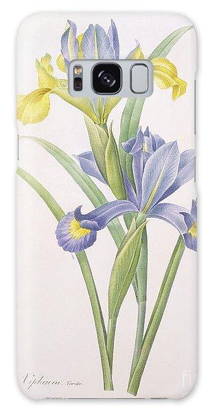 Botanical Garden Galaxy Case - Iris Xiphium by Pierre Joseph Redoute