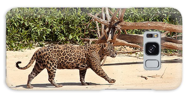 Jaguar Walking On A River Bank Galaxy Case