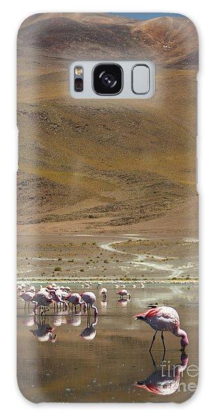 Laguna Colorada, Andes, Bolivia Galaxy Case