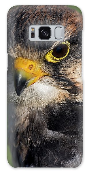 Lanner Falcon Galaxy Case