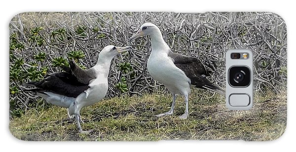 Laysan Albatross Hawaii #2 Galaxy Case
