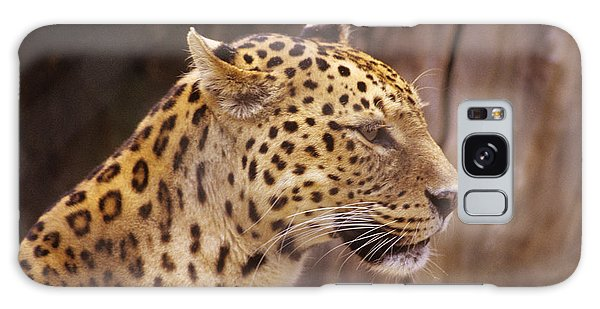 Leopard Galaxy Case