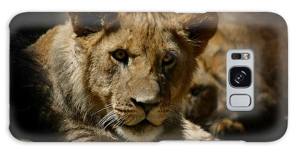 Lion Cub Galaxy Case