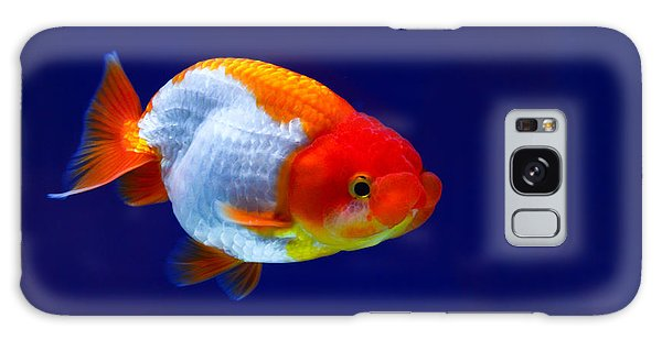 Lion Head Goldfish 4 Galaxy Case