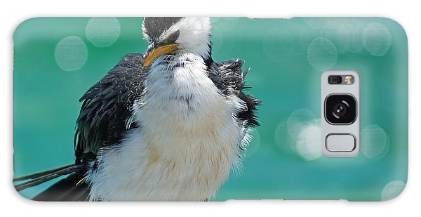 Little Pied Cormorant I Galaxy Case
