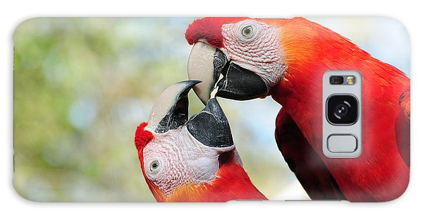 Macaws Galaxy Case by Steven Sparks