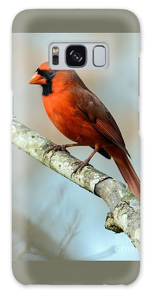 Male Cardinal Galaxy Case by Debbie Green