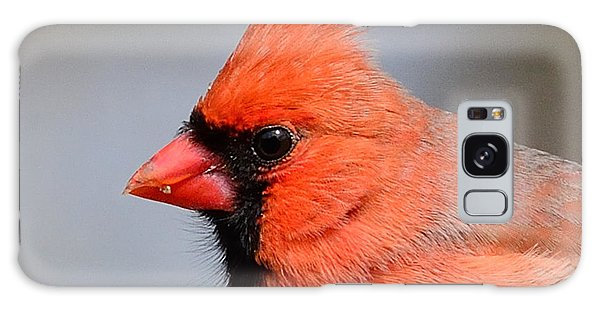 Male Cardinal Galaxy Case