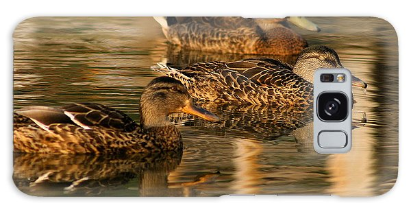 Mallards Swimming In The Water At Magic Hour Galaxy Case