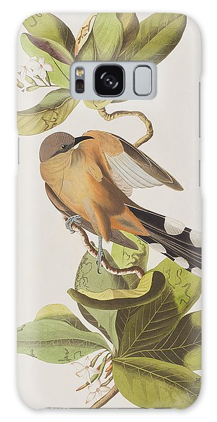 Mangrove Cuckoo Galaxy Case by John James Audubon