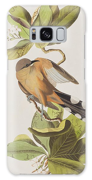 Mangrove Galaxy Case - Mangrove Cuckoo by John James Audubon