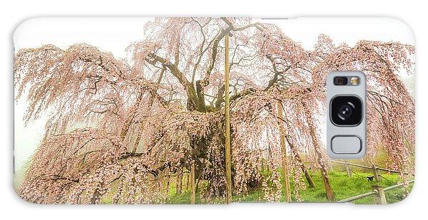 Galaxy Case featuring the photograph Miharu Takizakura Weeping Cherry02 by Tatsuya Atarashi