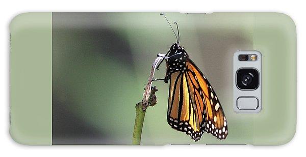 Monarch Butterfly Stony Brook New York Galaxy Case