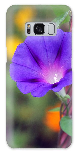 Galaxy Case featuring the photograph Morning Glory by Vadim Levin