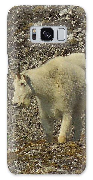 Mountain Goat Ewe Galaxy Case