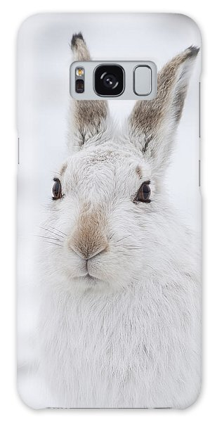 Mountain Hare In The Snow - Lepus Timidus  #1 Galaxy Case