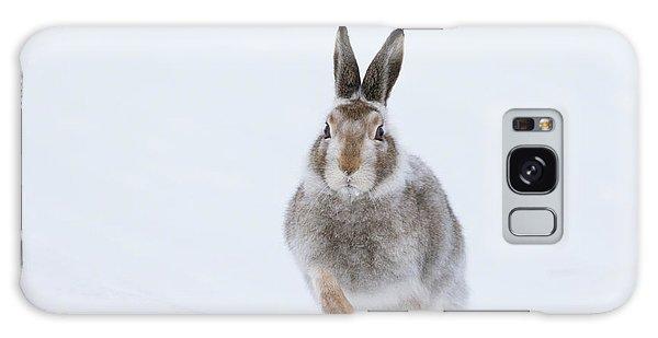 Mountain Hare - Scotland Galaxy Case