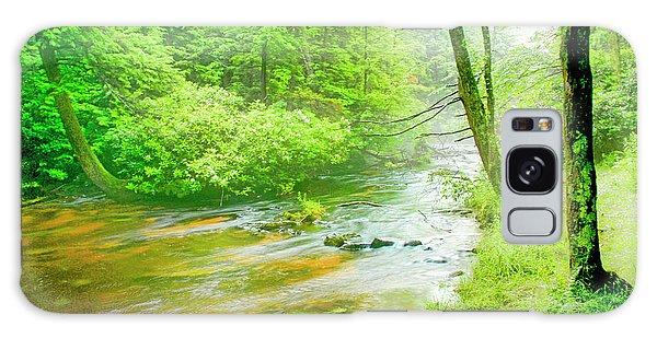 Mountain Stream, Pocono Mountains, Pennsylvania Galaxy Case by A Gurmankin