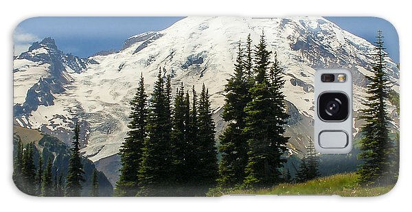 Mt. Rainier Alpine Meadow Galaxy Case