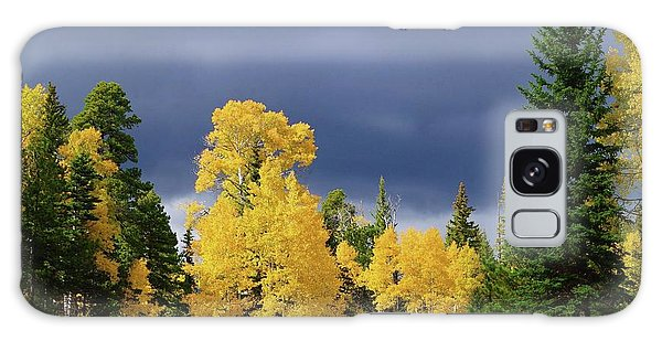 North Rim Fall  Galaxy Case