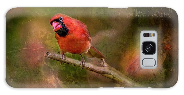 Northern Cardinal Galaxy Case by Irwin Seidman