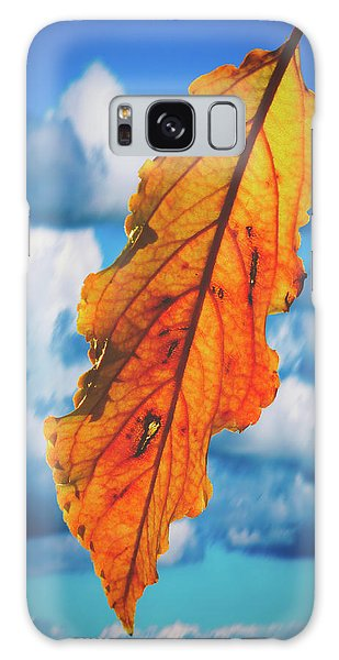 October Leaf B Fine Art Galaxy Case