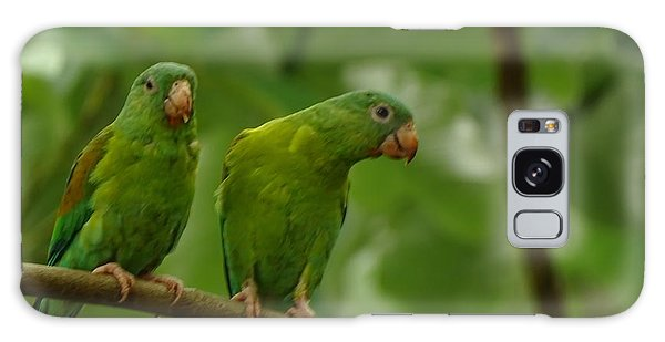 Orange -chinned Parakeets  Galaxy Case