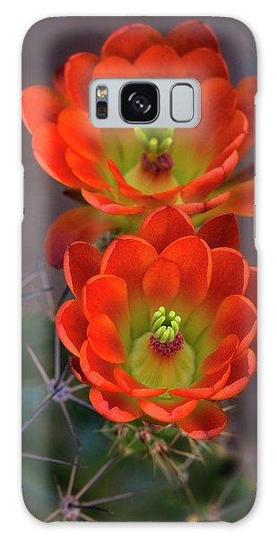 Galaxy Case featuring the photograph Orange Ya Beautiful  by Saija Lehtonen