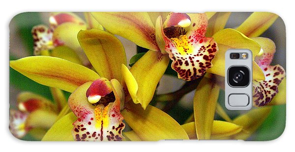 Orchid 9 Galaxy Case by Marty Koch