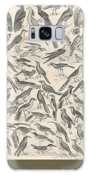 Condor Galaxy S8 Case - Ornithology by Dreyer Wildlife Print Collections