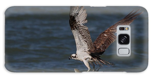 Osprey In Flight Galaxy Case by Meg Rousher