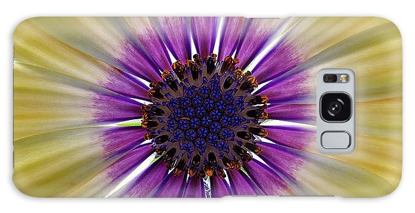 Osteospermum The Cape Daisy Galaxy Case