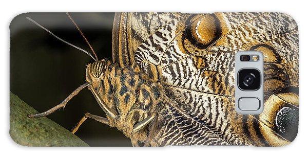 Owl Butterfly Galaxy Case